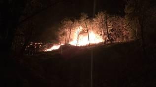 Incendio boschivo alle spalle di Porto Vado