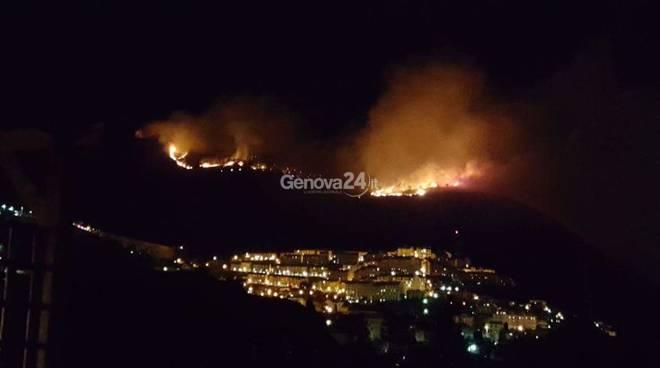 Incendi in Liguria, nuovi fronti a Genova e provincia: caccia ai piromani