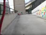 Savona, il video che racconta la giornata di un cane del canile