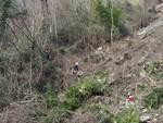 Vento, alberi abbattuti in val d'Aveto