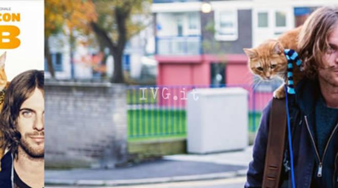 Martedì e mercoledì al NuovoFilstudio: A spasso con Bob (A street cat named Bob)