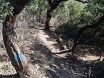 Val Maremola Trial atti incivili lungo il percorso