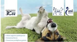 Corso addestramento Cani 3Cani