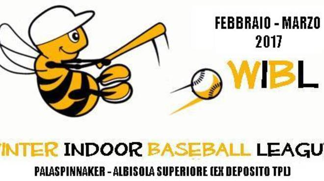 Winter Indoor League