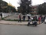 Cinghiali in via Piave ad Albaro