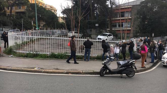 Albaro, copia di cinghiali a spasso per via Piave: folla di curiosi