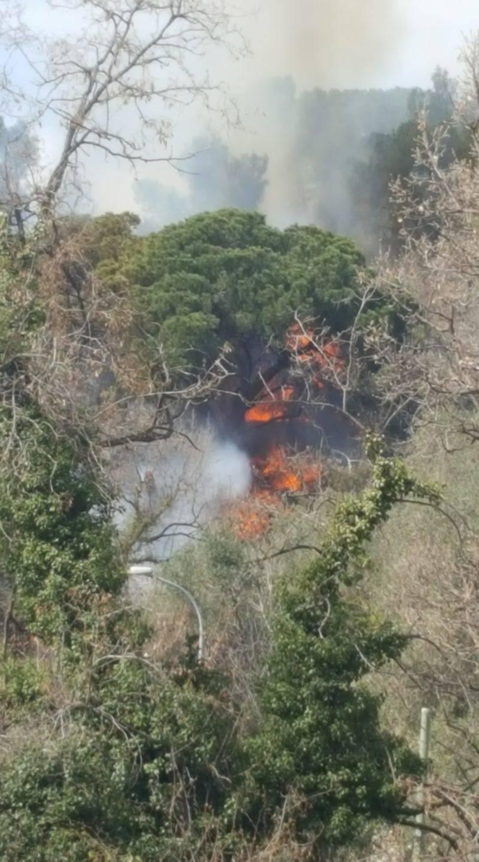 Incendio boschivo a San Bernardino