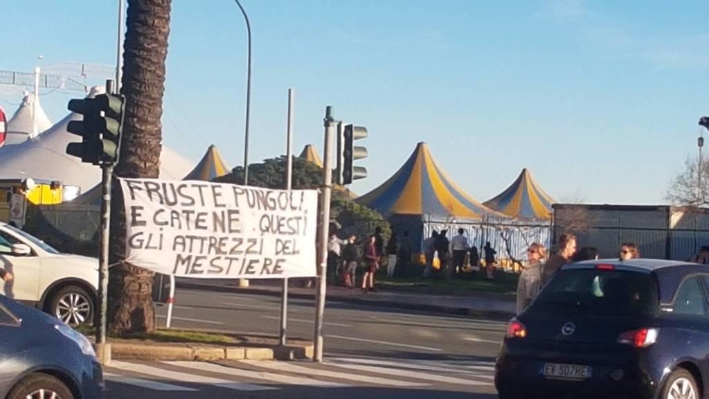 Protesta circo