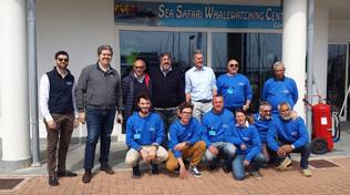 "A Marina di Loano arriva il ""Whale Watching"" di Sea Safari"