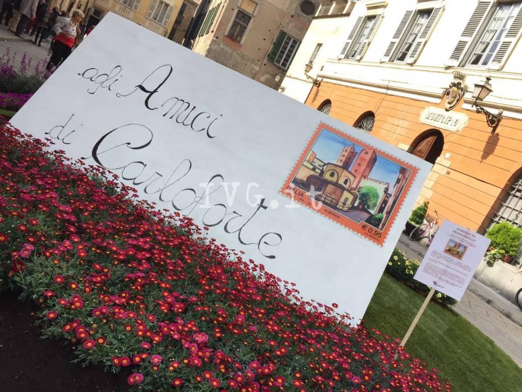 Fior d'Albenga 2017