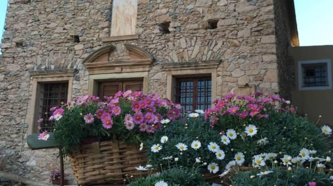 verezzi in fiore