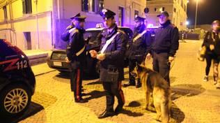 controlli carabinieri savona notte