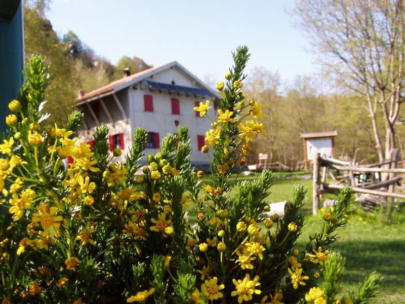 Festa di Primavera al Rifugio Pian delle Bosse