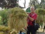 oliviero masseroli