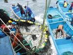 pescatori ecuador