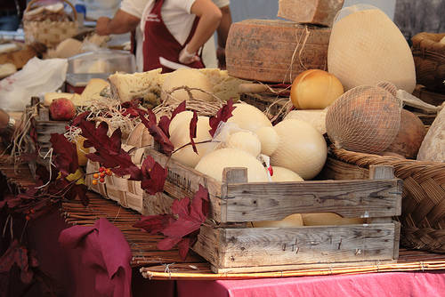 sapori al ducale formaggio