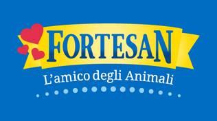 Fortesan Logo