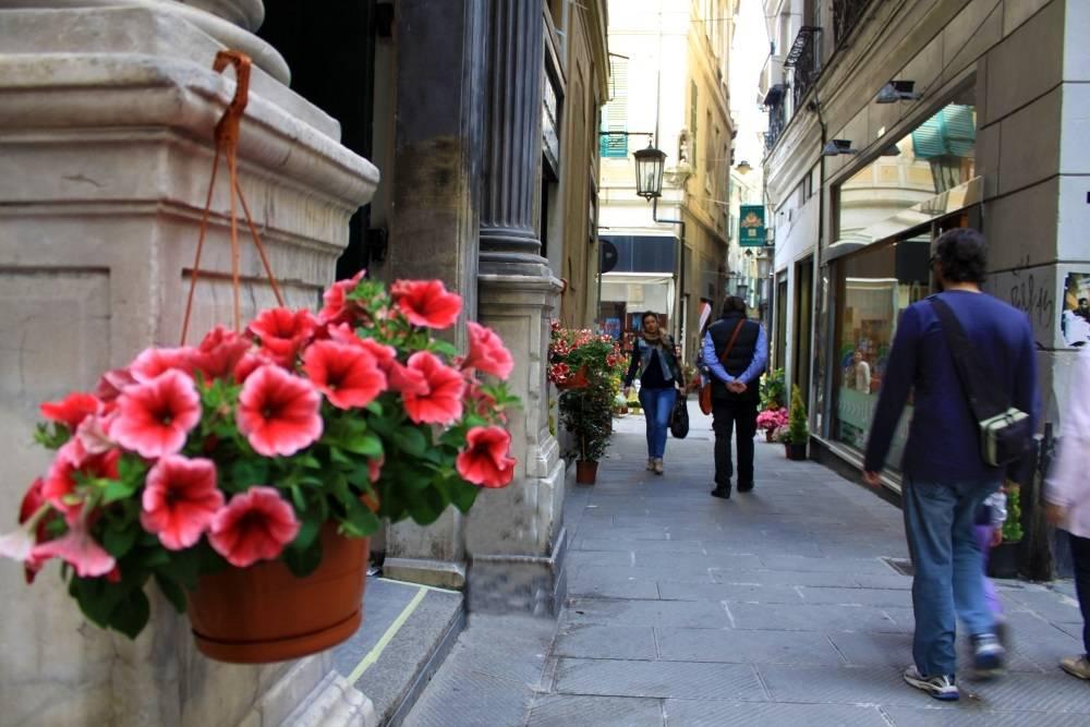 Via Luccoli in fiore