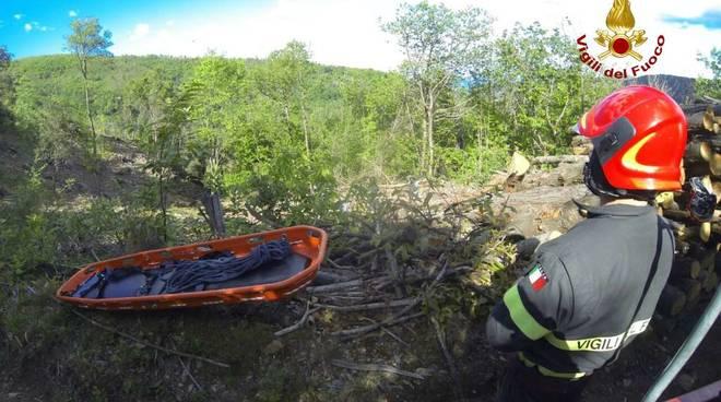 vigili del fuoco soccorso bosco