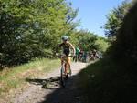 Alta Via Stage Race
