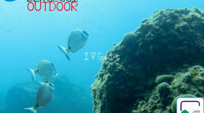 Escursione guidata di Snorkeling alle falesie e Grotta Marina