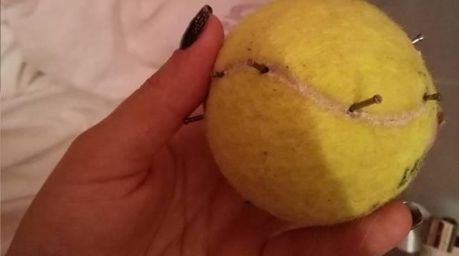 Pallina Tennis Chiodi Legino