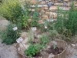 giardino libereso guglielmi