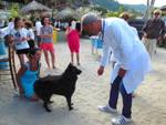 spiagge didattiche cani