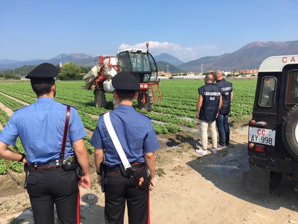 Albenga, controlli dei carabinieri nelle aziende agricole e nei cantieri edili