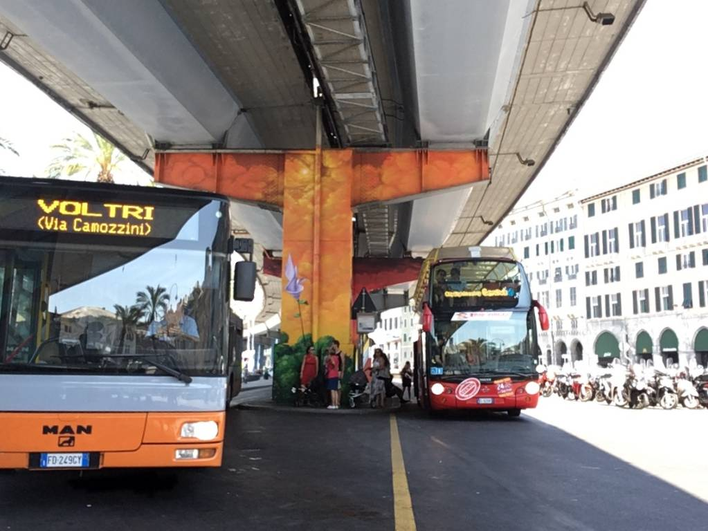 autobus svizzeri man amt