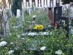 cimitero erba alta