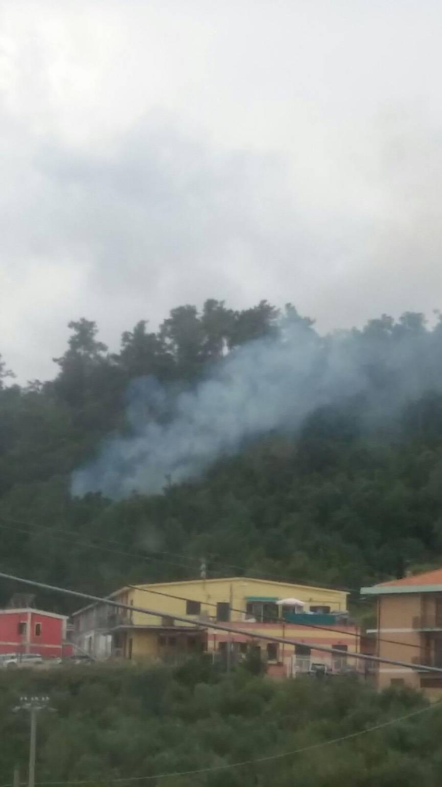 Incendio boschivo Loano località Morteo