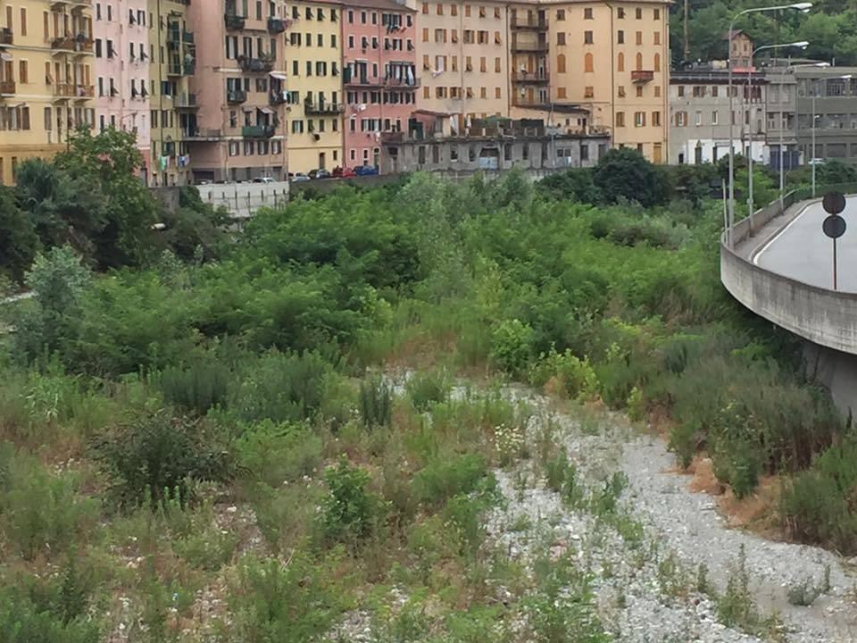 M5S, il reportage-denuncia sulla situazione del torrente Polcevera