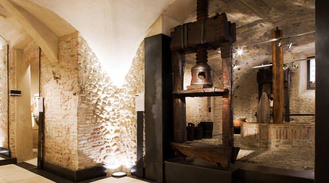 Museo Sommariva Civiltà dell'Olivo Albenga