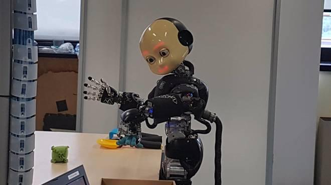 Robot iit