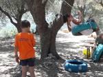 Il campo solare: AsinOlla Summer Camp