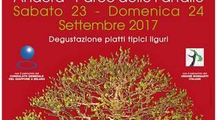 Festival del Bonsai ad Andora