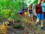 Camminata Mioglia