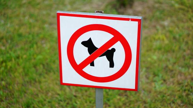 vietato ingresso cani
