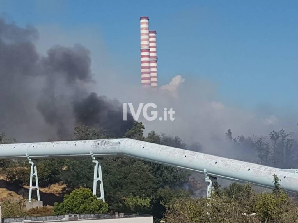 Vado Ligure, incendio boschivo a Bossarino