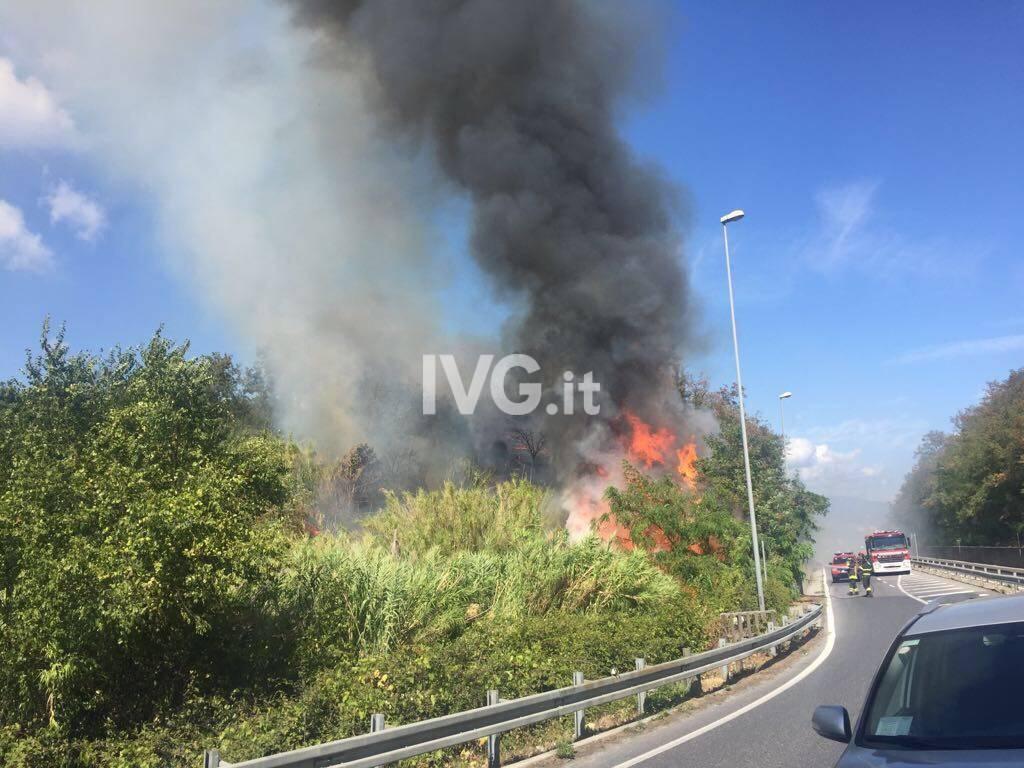 Vado Ligure incendio boschivo Bossarino