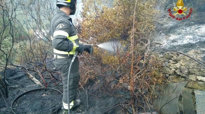 Incendio Boschivo Stellanello Cavalli