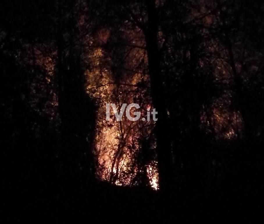 Incendio Boschivo Notte