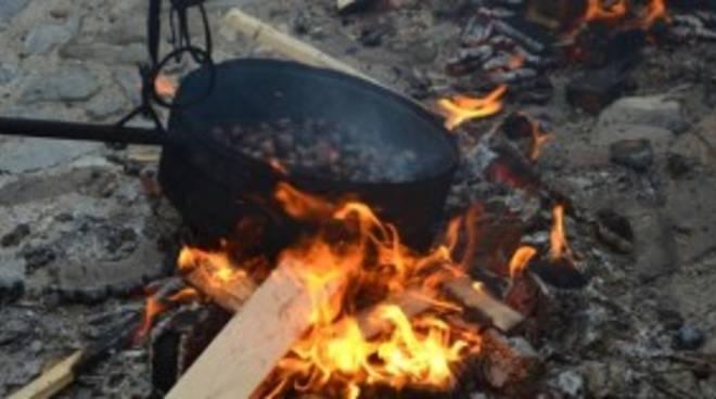 funghinpiazza festa della castagna calizzano