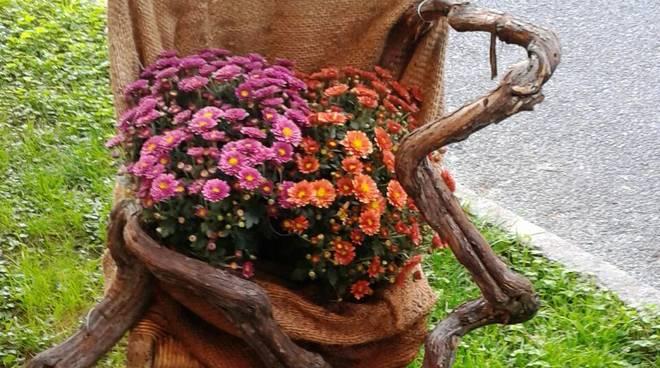 furto fiori pietra