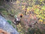 pulizia boschi urbe