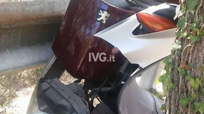 Scooterista colpito da un daino finisce all'ospedale