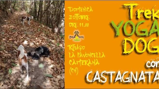 Trekking cani yogadog castagnata Alta Langa Educane