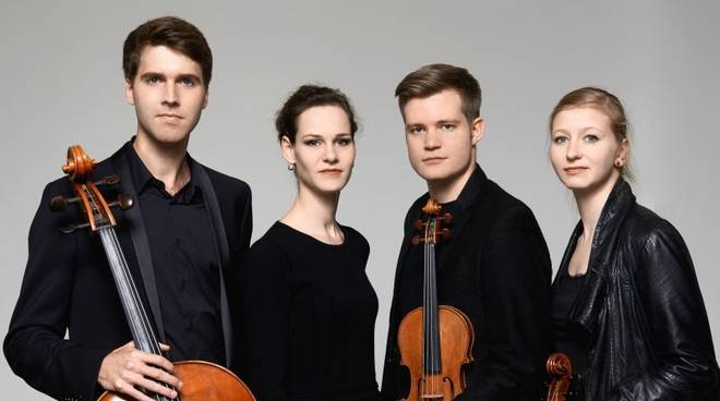 notos quartet