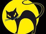 gatto nero sfortuna sfida superstizione
